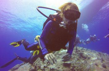 diver-under-the-sea-887826