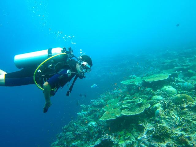 Scuba dive trip