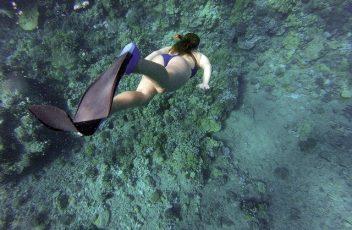 snorkeling-984422_640